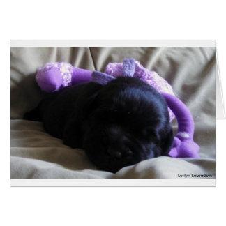 Black Labrador Retriever Puppy on a Blank Card