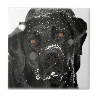 Black Labrador - Snow Globe Tile