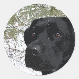 Black Labrador - Sparkling Pines Classic Round Sticker