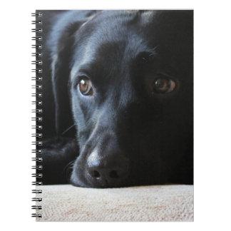 Black Labrador Spiral Notebook