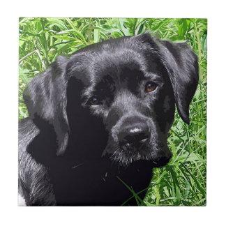 Black Labrador - Spring Joy Ceramic Tile