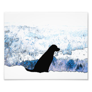 Black Labrador - Upon a Mountain Photo Print