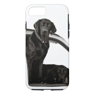 Black Labs in Car Window Phone Case