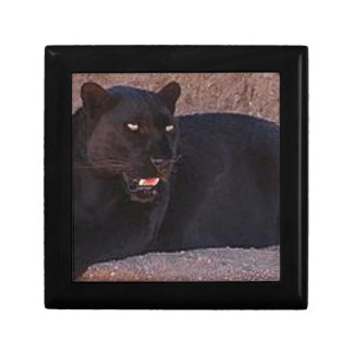 Black Leopard Gift Box