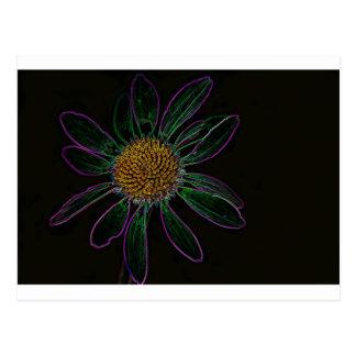 Black Light Neon Flower Power Postcard