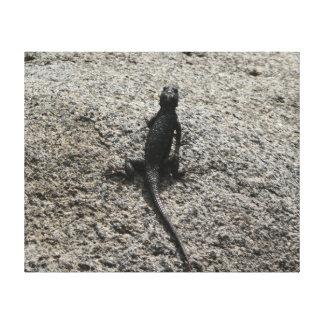 Black Lizard Canvas Print