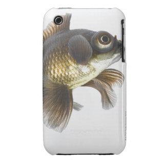 Black moor goldfish (Carassius auratus) 2 iPhone 3 Cases
