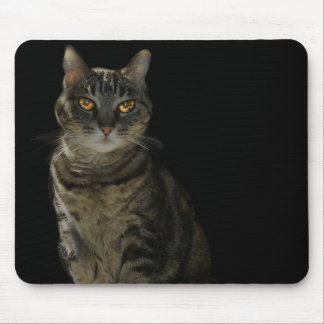 Black mouse pad with a dramatic cat