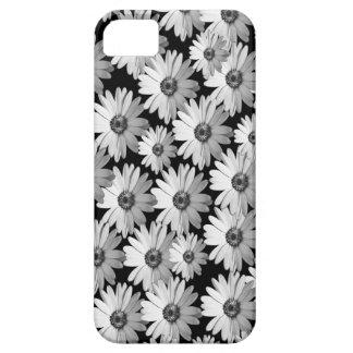 Black n White Daisies iPhone 5 Cases