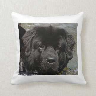 black newfie.png cushion