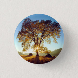 Black Oak Trees | Cleveland National Forest, CA 3 Cm Round Badge