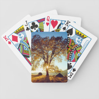 Black Oak Trees | Cleveland National Forest, CA Bicycle Playing Cards