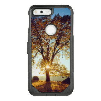Black Oak Trees | Cleveland National Forest, CA OtterBox Commuter Google Pixel Case
