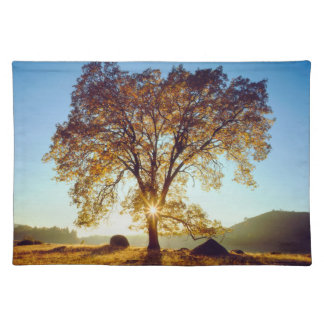 Black Oak Trees | Cleveland National Forest, CA Placemat