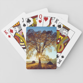 Black Oak Trees | Cleveland National Forest, CA Playing Cards
