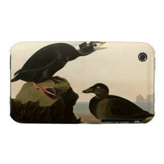 Black or Surf Duck Case-Mate iPhone 3 Cases