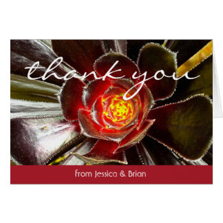 Black orange cactus close-up photo thank you card
