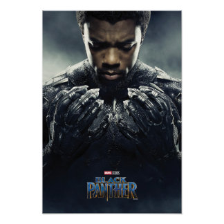 Black Panther | Black Panther Character Poster