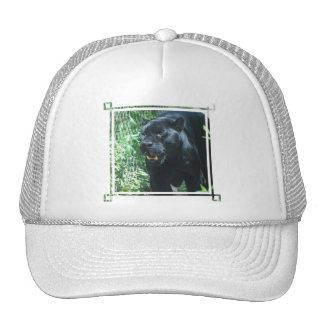 Black Panther Cat  Baseball Hat