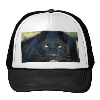 Black Panther Trucker Hat