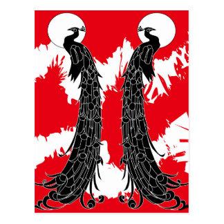 Black peacock postcard