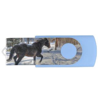 Black Percheron in Winter on a Horse Ranch Swivel USB 2.0 Flash Drive