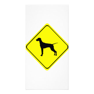 Black Pointer Dog Silhouette Caution Crossing Sign Photo Card