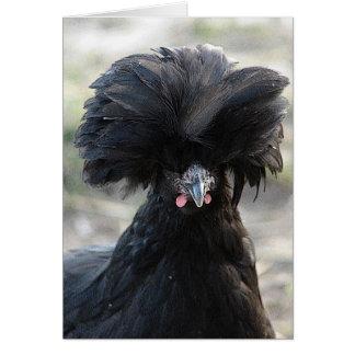 Black Polish Hen Card