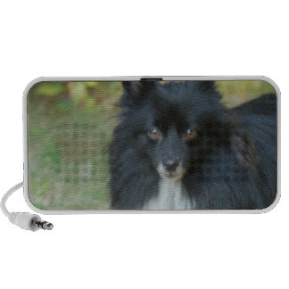 Black Pomeranian Dog Portable Speakers
