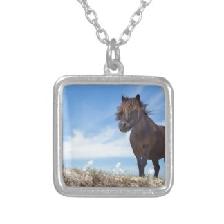 Black pony on sand with blue sky silver plated necklace