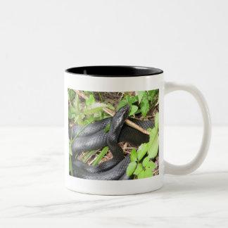 Black Racer Snake Sunning Two-Tone Coffee Mug