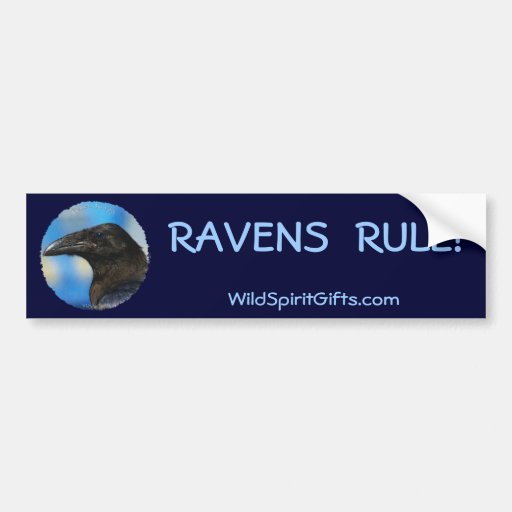 BLACK RAVEN Collection Bumper Stickers