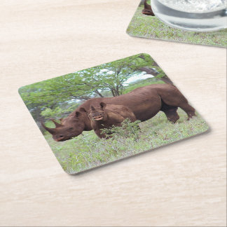 Black Rhino with Calf Square Paper Coaster