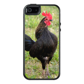 Black Rooster OtterBox iPhone 5/5s/SE Case