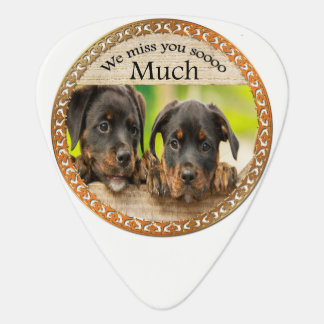 Black Rottweiler cute puppy dogs with sad faces Plectrum