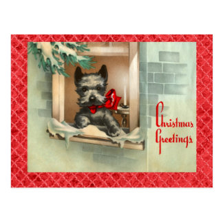 Black Scottie Dog in Window Red Postcard