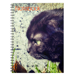 Black Scottish Fold Kitty Spiral Notebook