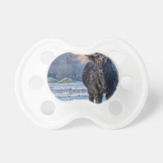 Black scottish highlander cow in winter landscape baby pacifiers