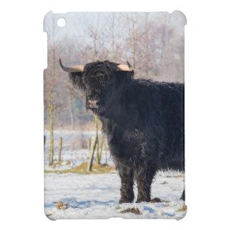 Black scottish highlander cow in winter snow iPad mini case