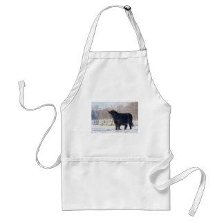Black scottish highlander cow in winter snow standard apron