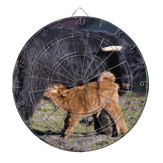 Black Scottish highlander mother cow with drinking Dartboard