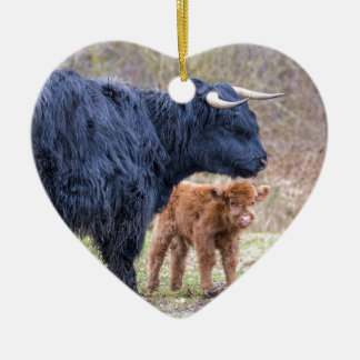Black Scottish highlander mother cow with newborn Ceramic Heart Decoration