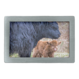 Black Scottish highlander mother cow with newborn Rectangular Belt Buckle