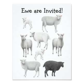 Black Sheep Invitation