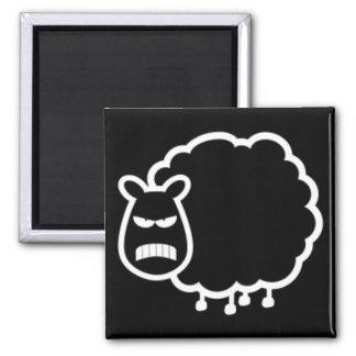Black Sheep Square Magnet