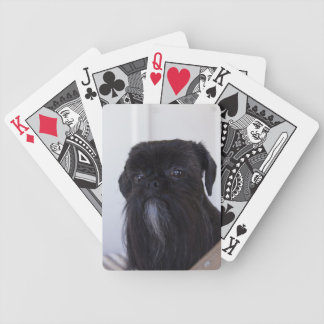 Black Shih Tzu Bicycle Playing Cards