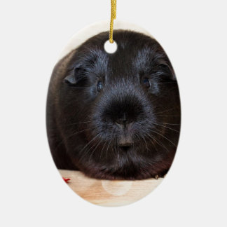 Black Short Haired Romance Guinea Pig Ceramic Ornament