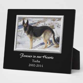 Black Silver Frame Pet Memorial Template
