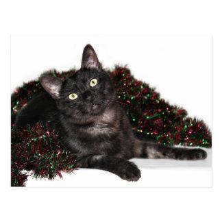 Black smoke cat Christmas Postcard