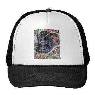 Black snake cap